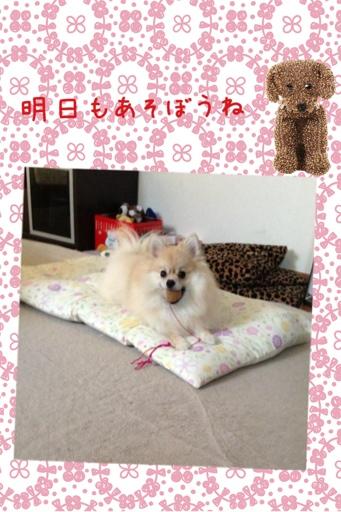 fc2blog_20130731165558c5c.jpg
