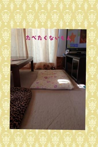 fc2blog_201308071828599f4.jpg