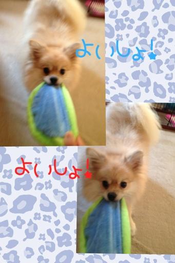 fc2blog_2013082219474417e.jpg
