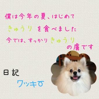 fc2blog_2013090315404538a.jpg