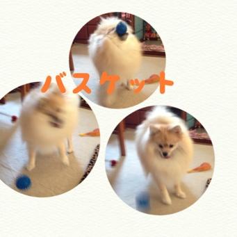 fc2blog_20130911201320867.jpg