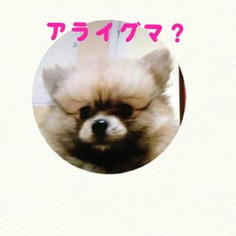 fc2blog_20130926202911e2e.jpg