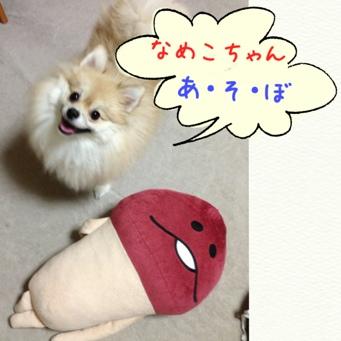 fc2blog_20130927222204cf6.jpg