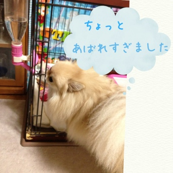 fc2blog_20130927222603005.jpg