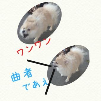 fc2blog_20131117211811837.jpg