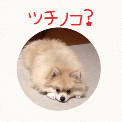 fc2blog_20141113210429f97.jpg