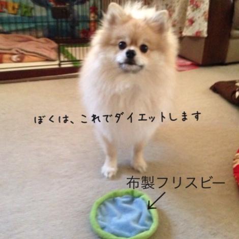 fc2blog_20141116221656531.jpg