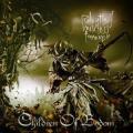 Children Of Bodom / Relentless Reckless Forever