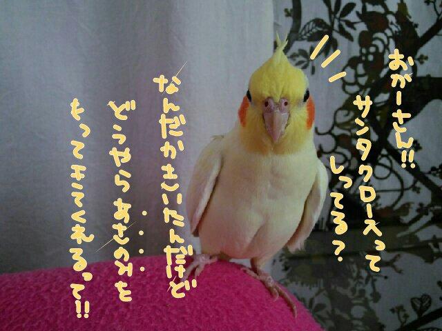 20141210125549859.jpg