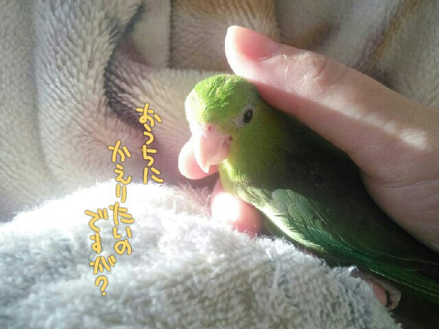 PicsPlay_1411940331736.jpg