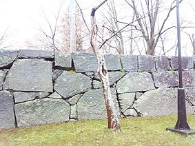 石垣220130514