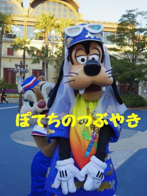 20140116 グリ