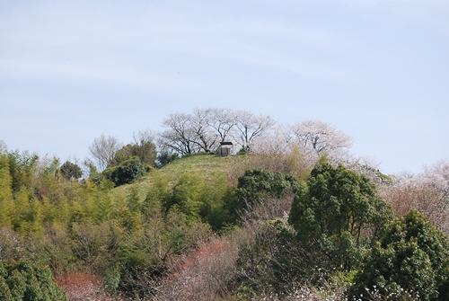 百合山山頂展望所