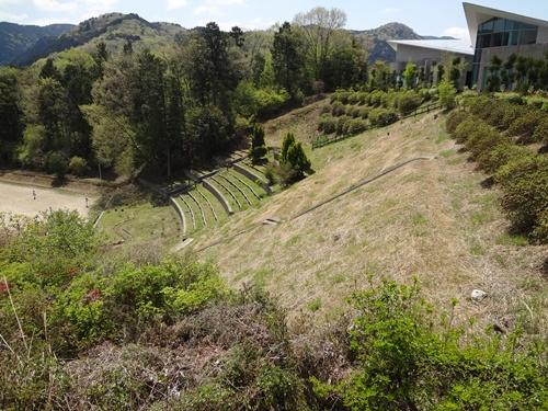 芝桜が植わってるハズの斜面