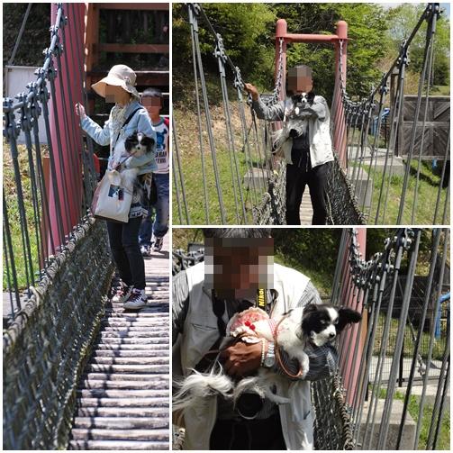 吊り橋を怖々渡りました