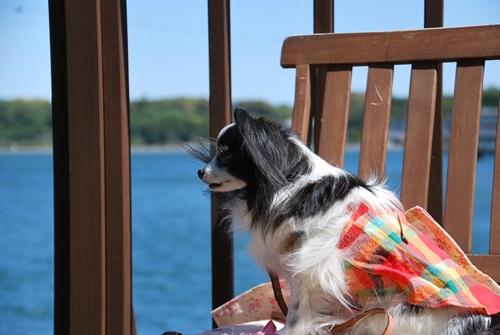 浜名湖をバックに椅子の上で