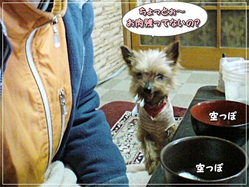 saku20140101102206.jpg