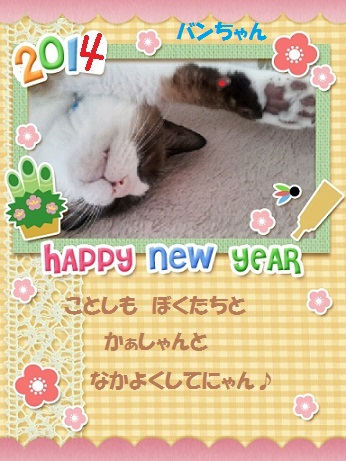 NewYear-2014-01-05(3).jpg