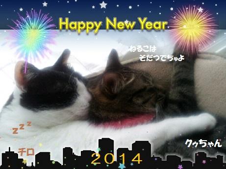 NewYear-2014-01-05(4).jpg