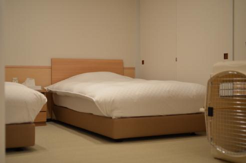 ベッドとクレート