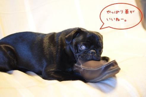 父の通勤靴