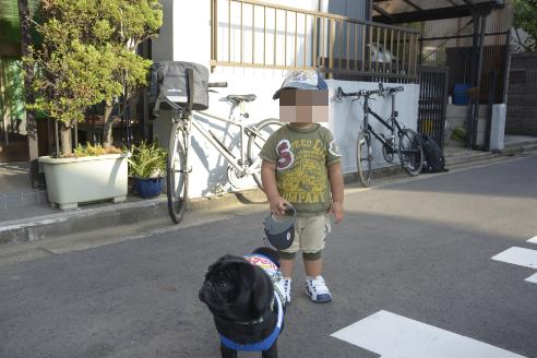 亮ちゃん初めての犬のお散歩