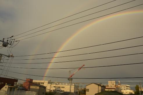くっきり虹がでました
