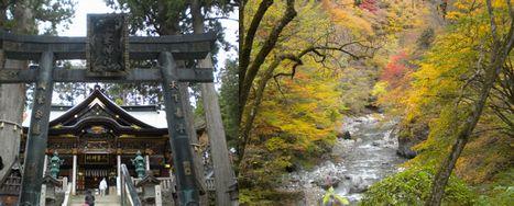 131110_三峰神社