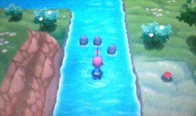 pokemonXY879879798889.jpg