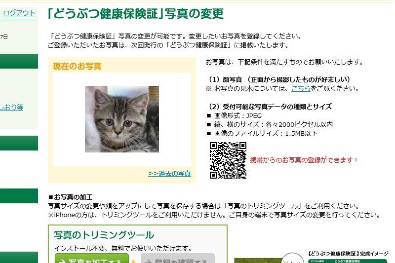 4_20130509180659.jpg