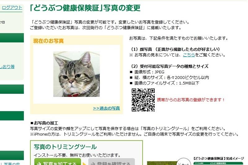 5_20130509180701.jpg
