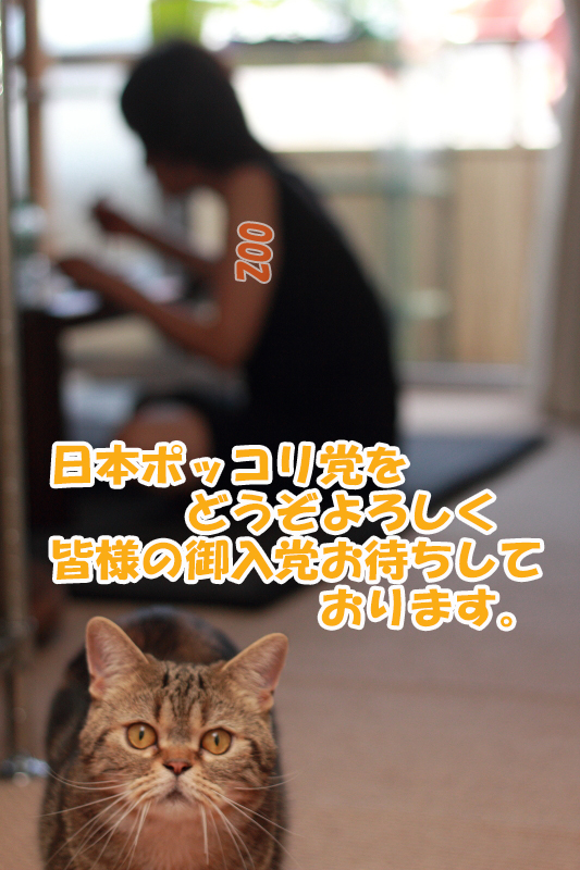 IMG_0413.jpg
