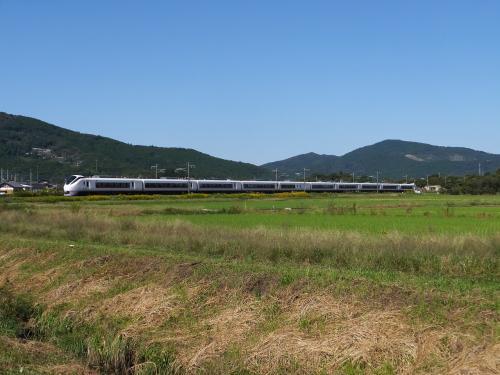 常磐線 E657