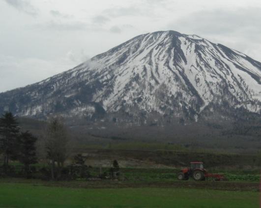CIMG7796-2春の羊蹄山