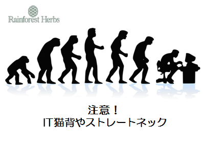 20140128.png
