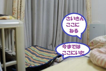 DSCN4205.jpg