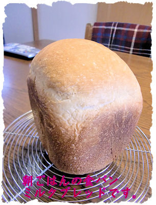 HBで作ったパン