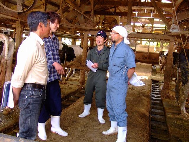 長嶌牧場にて