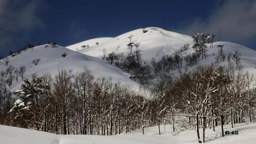 20120203深入山