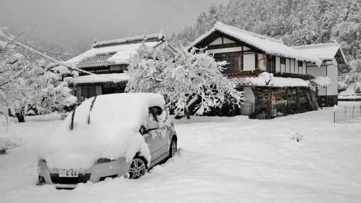 2509雪14273