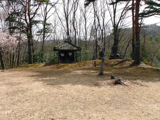 山田城・新城 (16)