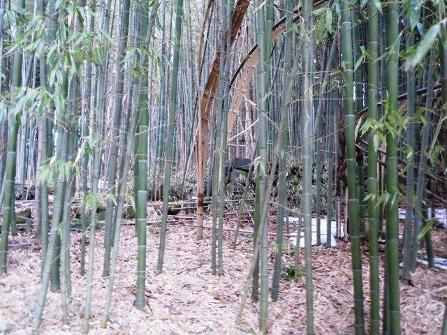 石川城 (7)