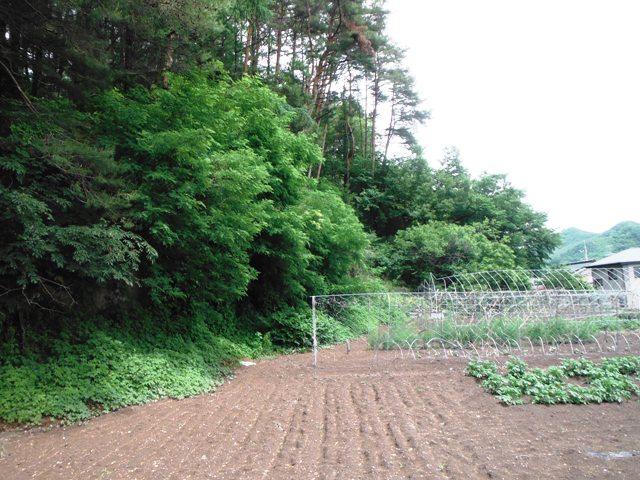 浅井城 (8)