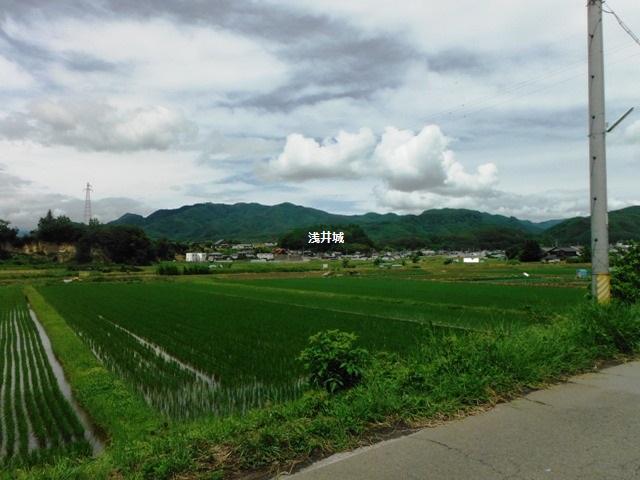 浅井城 (12)