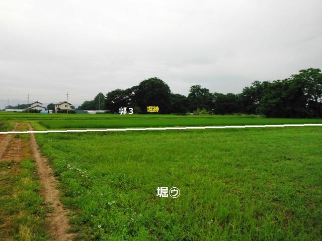 今井城 (22)
