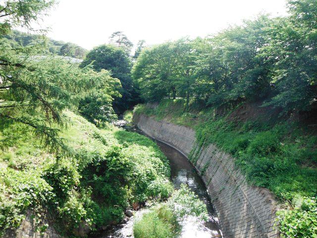 繰矢川城 (41)