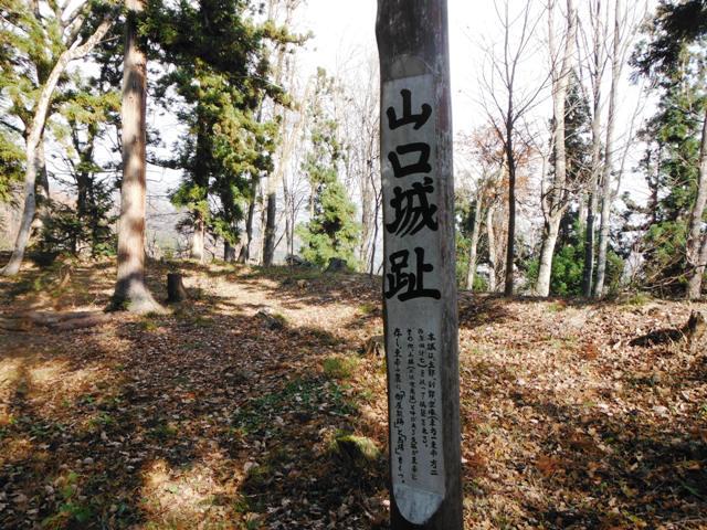 山口城の本城 (44)