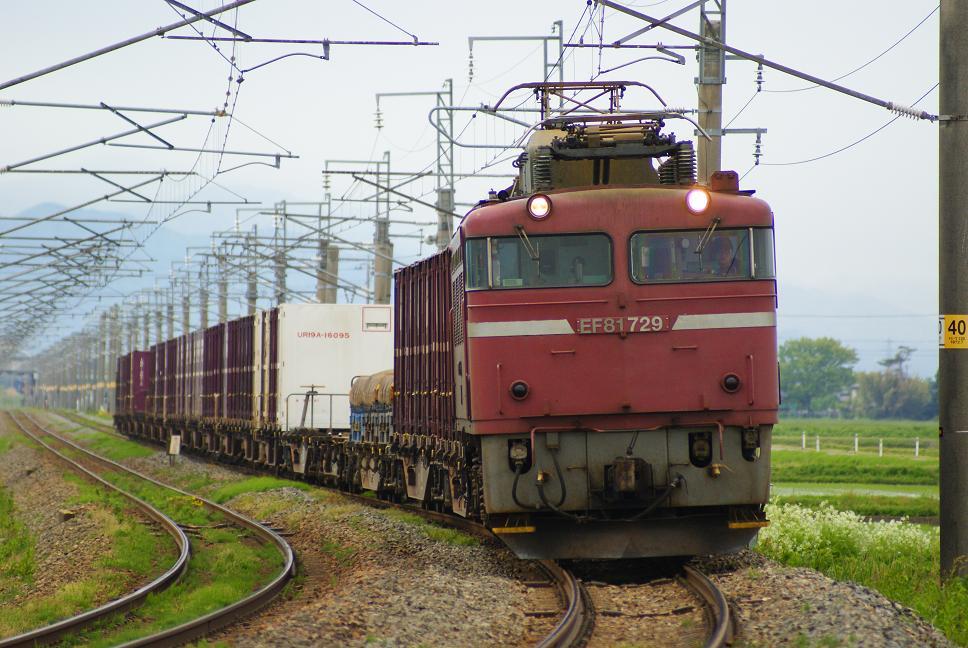DSC01053.jpg