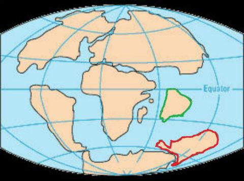 大陸移動4 65 百万年前 CRETACEOUS