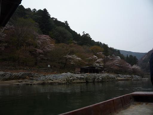 arasiyama1.jpg